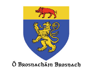 The Ó Brosnacháin coat of arms has the blazon of a gold lion rampant on a blue field, in chief a red boar on a gold field.